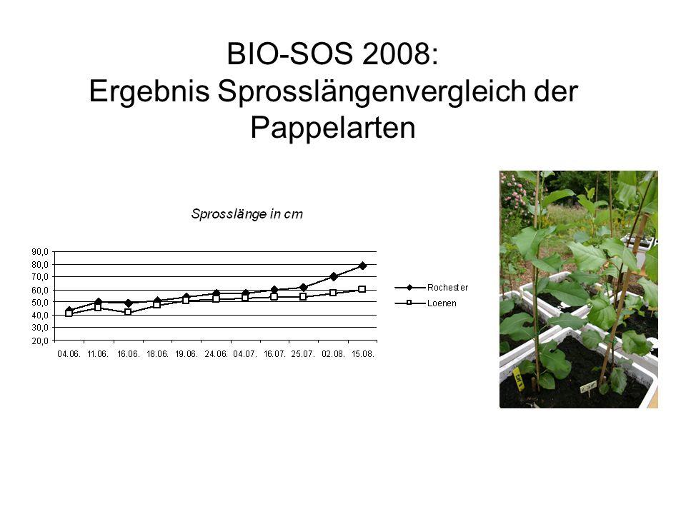 BIO-SOS 2008: Ergebnis Sprosslängenvergleich der Pappelarten
