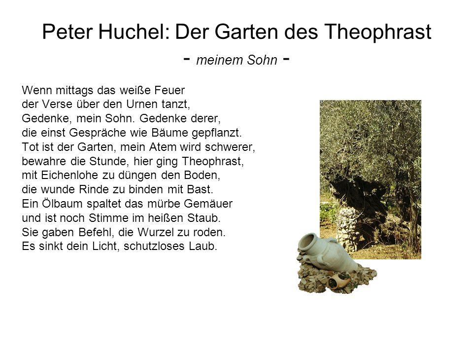 Peter Huchel: Der Garten des Theophrast - meinem Sohn - Wenn mittags das weiße Feuer der Verse über den Urnen tanzt, Gedenke, mein Sohn. Gedenke derer