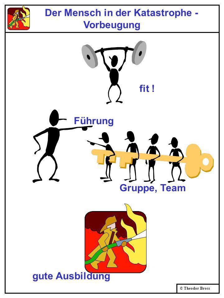 © Theodor Bross Der Mensch in der Katastrophe - Vorbeugung fit ! gute Ausbildung Gruppe, Team Führung