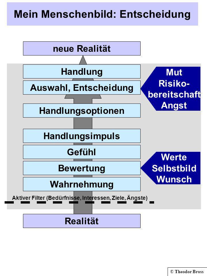 © Theodor Bross Mein Menschenbild: Entscheidung Realität Aktiver Filter (Bedürfnisse, Interessen, Ziele, Ängste) Handlung Auswahl, Entscheidung Handlu