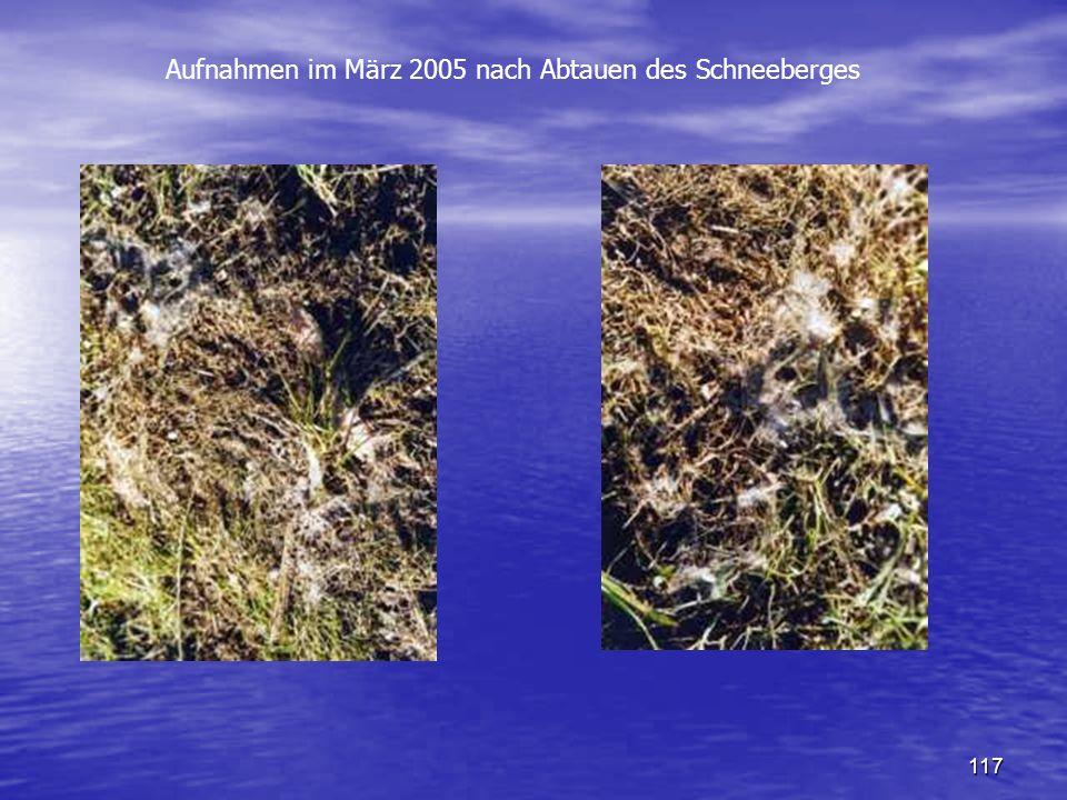 117 Aufnahmen im März 2005 nach Abtauen des Schneeberges