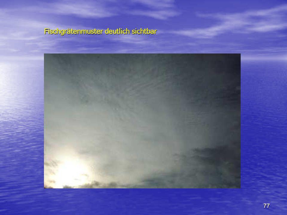 77 Fischgrätenmuster deutlich sichtbar Fischgrätenmuster deutlich sichtbar
