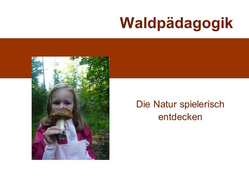 Waldpädagogik Die Natur spielerisch entdecken