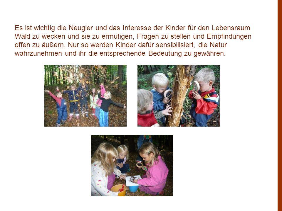 Es ist wichtig die Neugier und das Interesse der Kinder für den Lebensraum Wald zu wecken und sie zu ermutigen, Fragen zu stellen und Empfindungen off