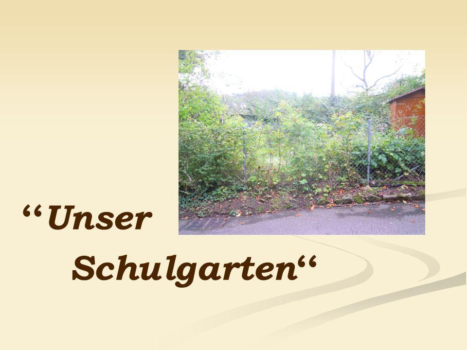 Unser Schulgarten