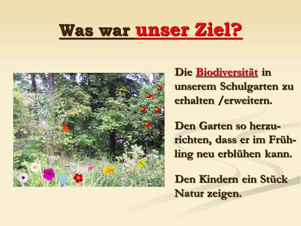 Was war unser Ziel? Die Biodiversität in unserem Schulgarten zu erhalten /erweitern. Den Garten so herzu- richten, dass er im Früh- ling neu erblühen