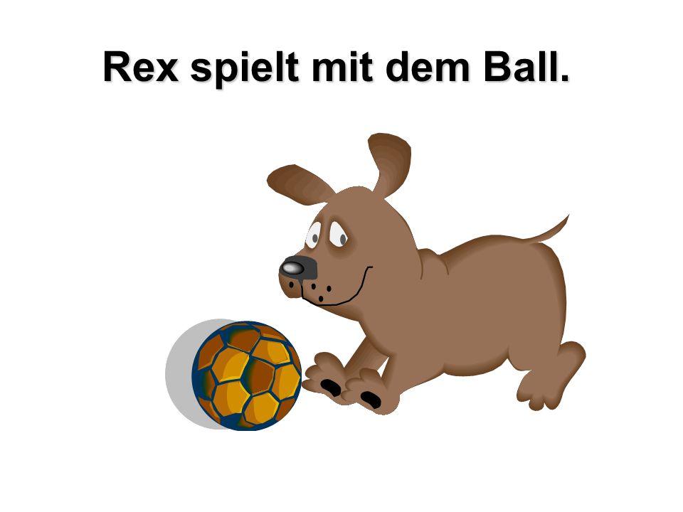 Rex spielt mit dem Ball.