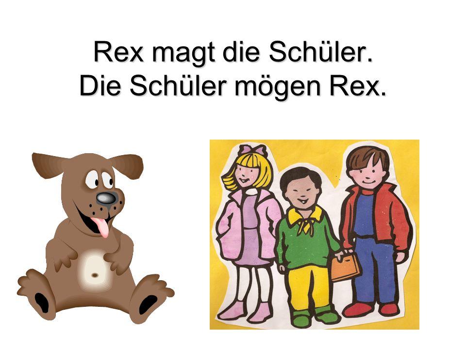 Rex magt die Schüler. Die Schüler mögen Rex.