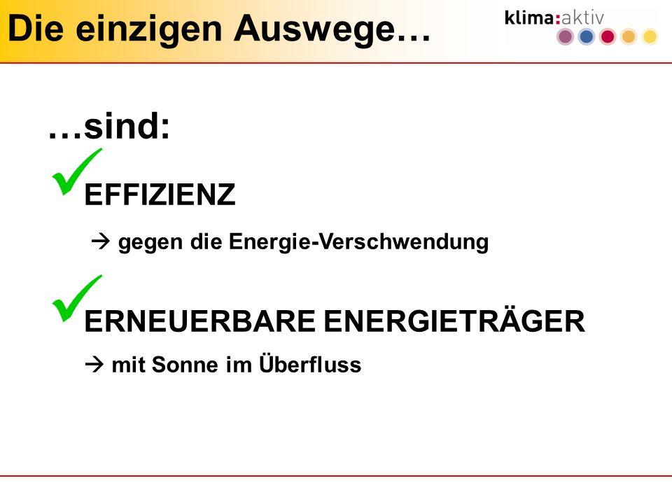 Die einzigen Auswege… …sind: EFFIZIENZ gegen die Energie-Verschwendung ERNEUERBARE ENERGIETRÄGER mit Sonne im Überfluss