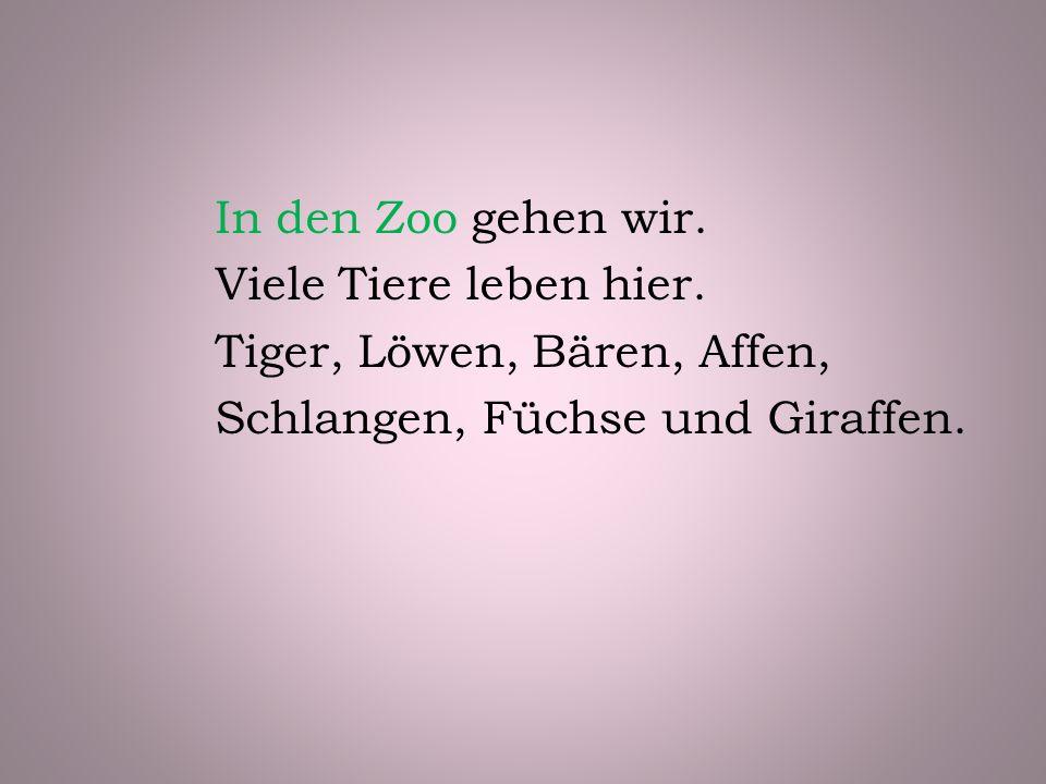 In den Zoo gehen wir. Viele Tiere leben hier.