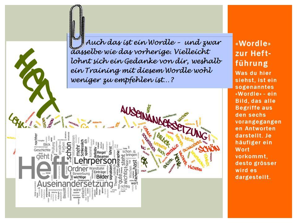 Was du hier siehst, ist ein sogenanntes «Wordle» - ein Bild, das alle Begriffe aus den sechs vorangegangen en Antworten darstellt.