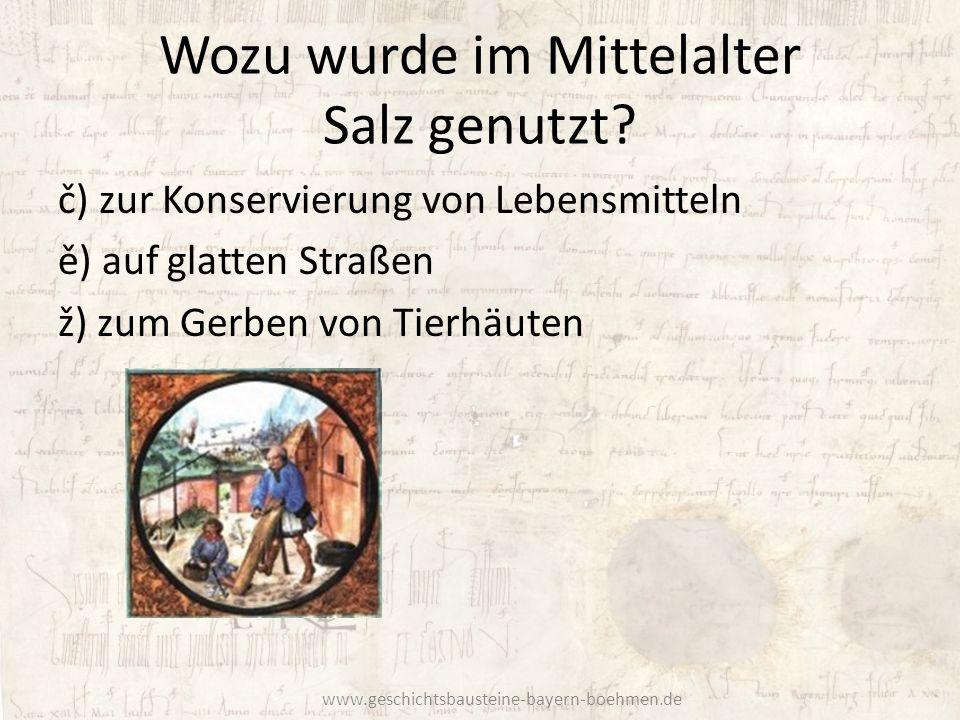 Wozu wurde im Mittelalter Salz genutzt? č) zur Konservierung von Lebensmitteln ě) auf glatten Straßen ž) zum Gerben von Tierhäuten www.geschichtsbaust