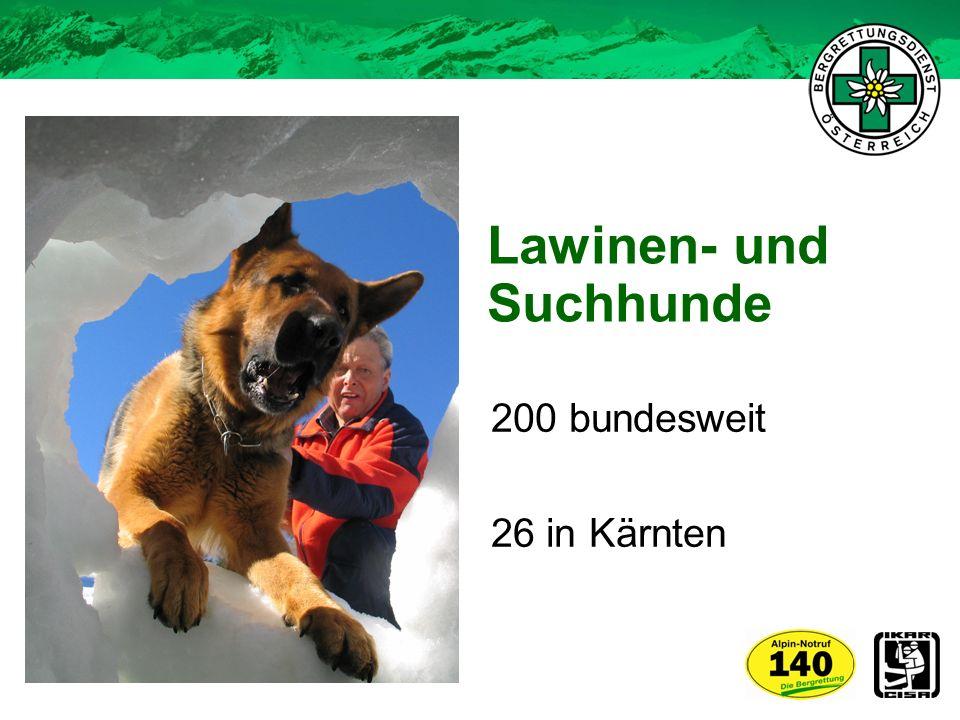Lawinen- und Suchhunde 200 bundesweit 26 in Kärnten
