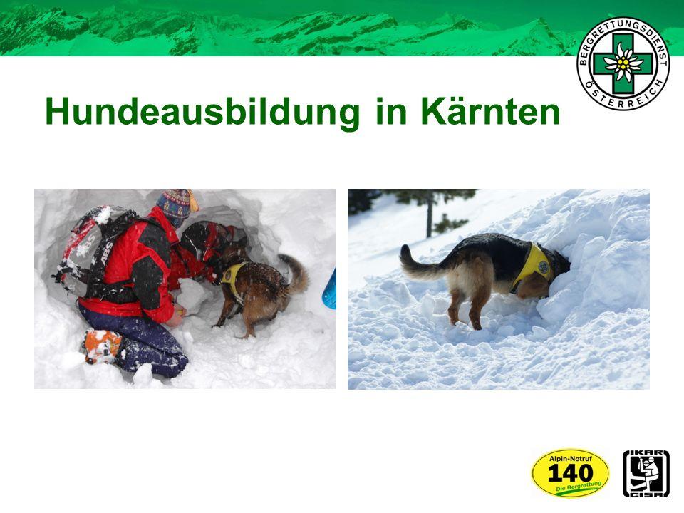 Hundeausbildung in Kärnten