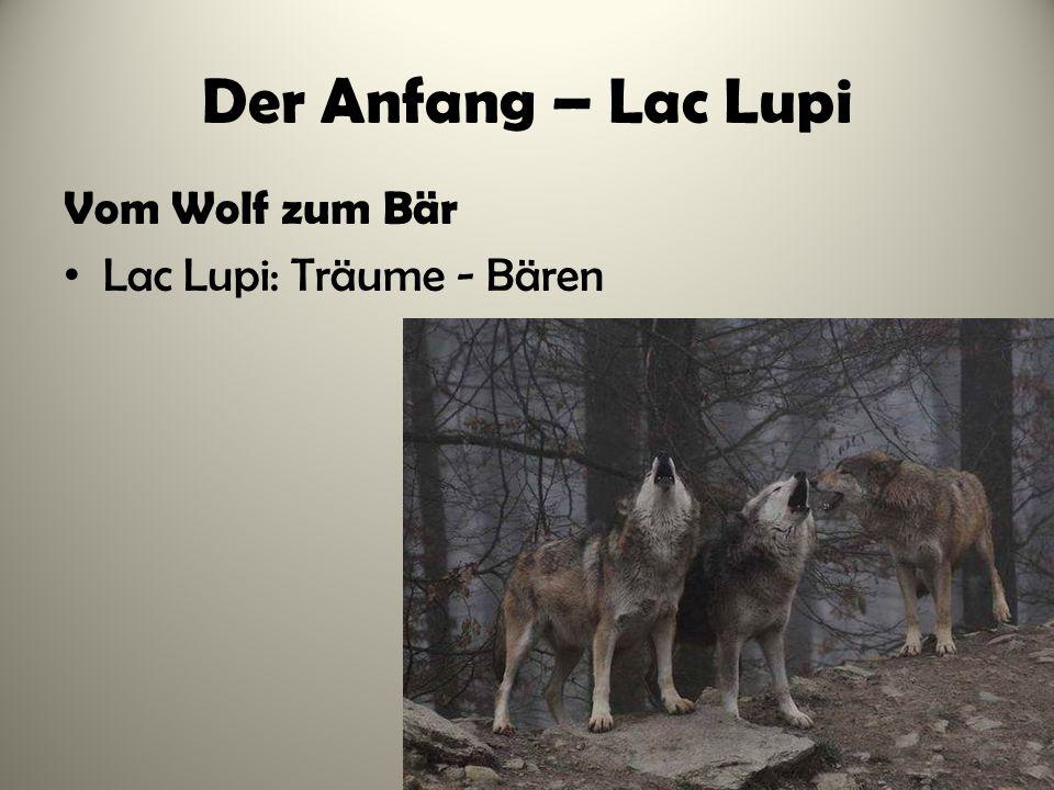 Der Anfang – Lac Lupi Vom Wolf zum Bär Lac Lupi: Träume - Bären