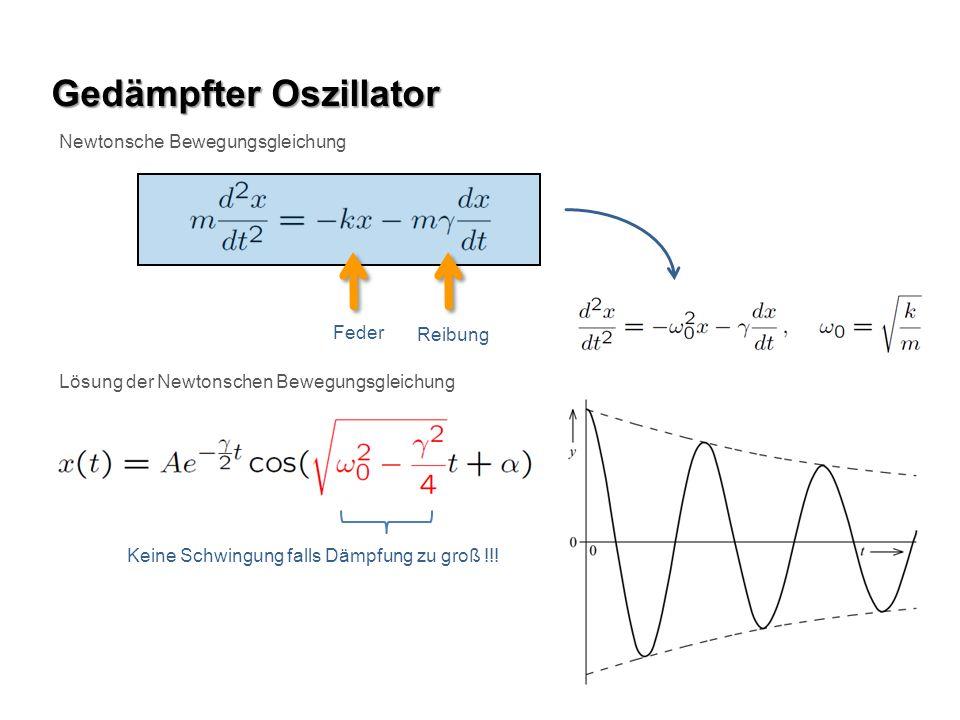 Gedämpfter Oszillator Newtonsche Bewegungsgleichung Feder Reibung Lösung der Newtonschen Bewegungsgleichung Keine Schwingung falls Dämpfung zu groß !!