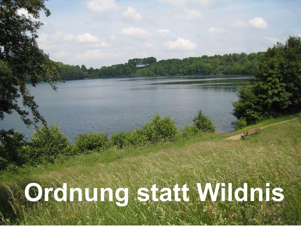 copyright rainer brämer 2009 Ordnung statt Wildnis