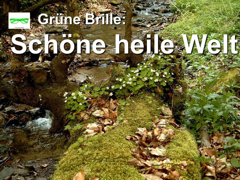 copyright rainer brämer 2009 Grüne Brille: Grüne Brille: Schöne heile Welt