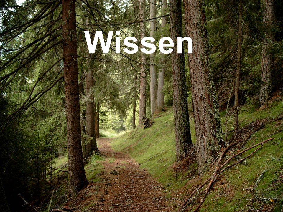 copyright rainer brämer 2009 Wissen