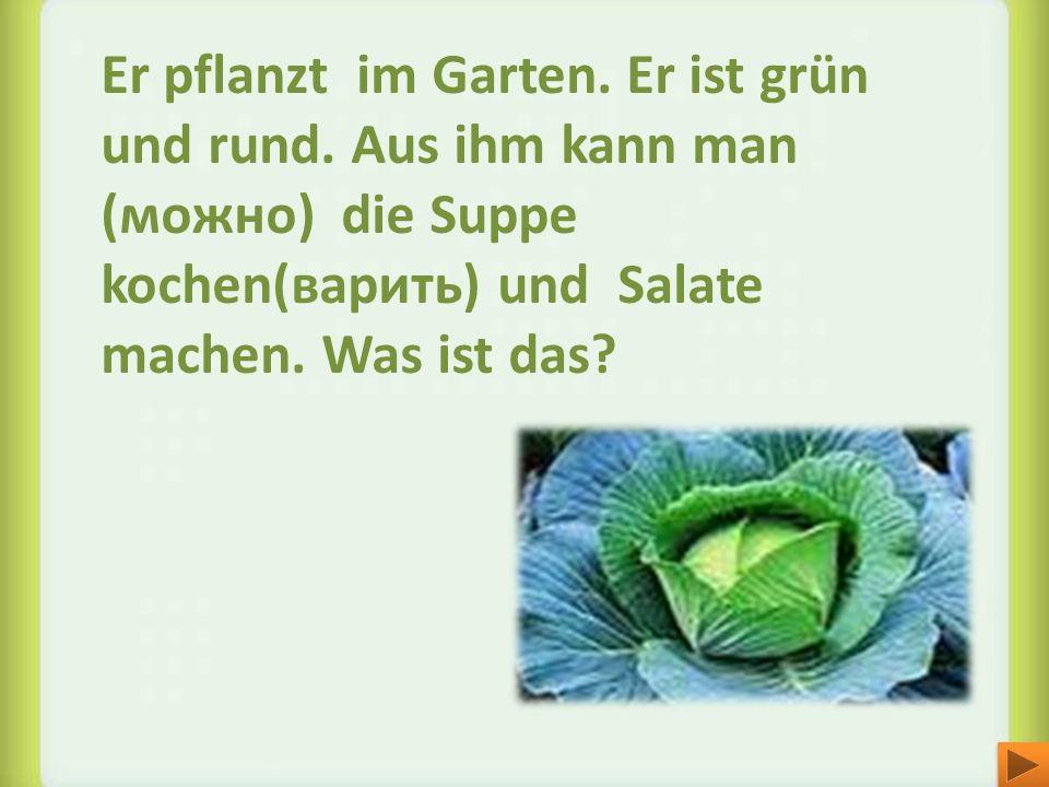 Er pflanzt im Garten. Er ist grün und rund. Aus ihm kann man (можно) die Suppe kochen(варить) und Salate machen. Was ist das?