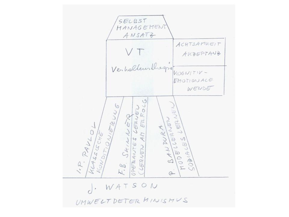SCHWERPUNKTZIELE FÜR PHASE 5 1.Planung spezieller Methoden Nutzung therapeutischen Wissens Verarbeitung vorliegender Klienteninformation Detaillierte Analyse der potenziellen Maßnahmen (Wissen, Können, Motivation, Rahmenbedingungen, sonstige Hilfsmittel) 2.Entscheidung über spezielle Interventionen 3.Durchführung der Maßnahmen