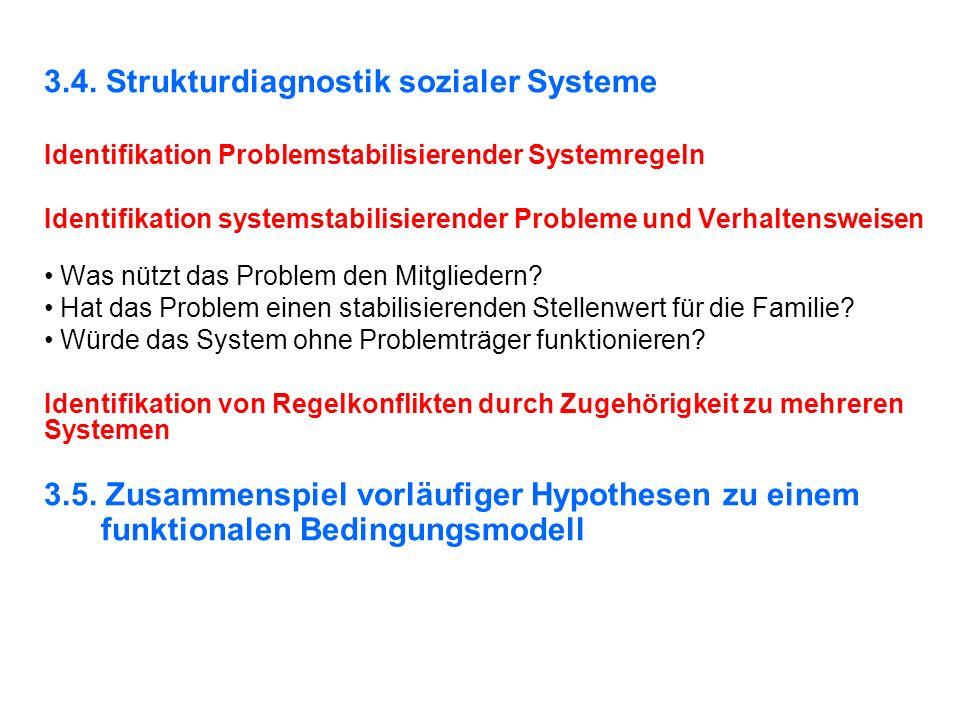 3.4. Strukturdiagnostik sozialer Systeme Identifikation Problemstabilisierender Systemregeln Identifikation systemstabilisierender Probleme und Verhal