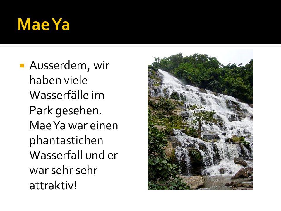 Ausserdem, wir haben viele Wasserfälle im Park gesehen.