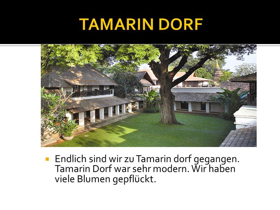 Endlich sind wir zu Tamarin dorf gegangen. Tamarin Dorf war sehr modern.