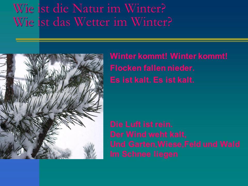 Wie ist die Natur im Winter? Wie ist das Wetter im Winter? Winter kommt! Flocken fallen nieder. Es ist kalt. Die Luft ist rein. Der Wind weht kalt, Un