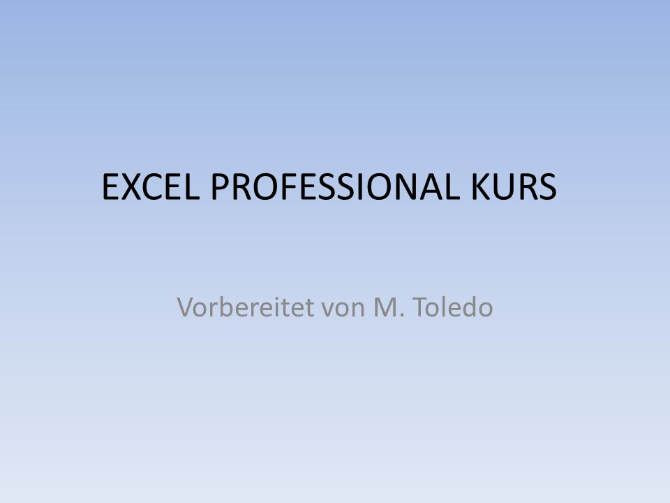 EXCEL PROFESSIONAL KURS Vorbereitet von M. Toledo