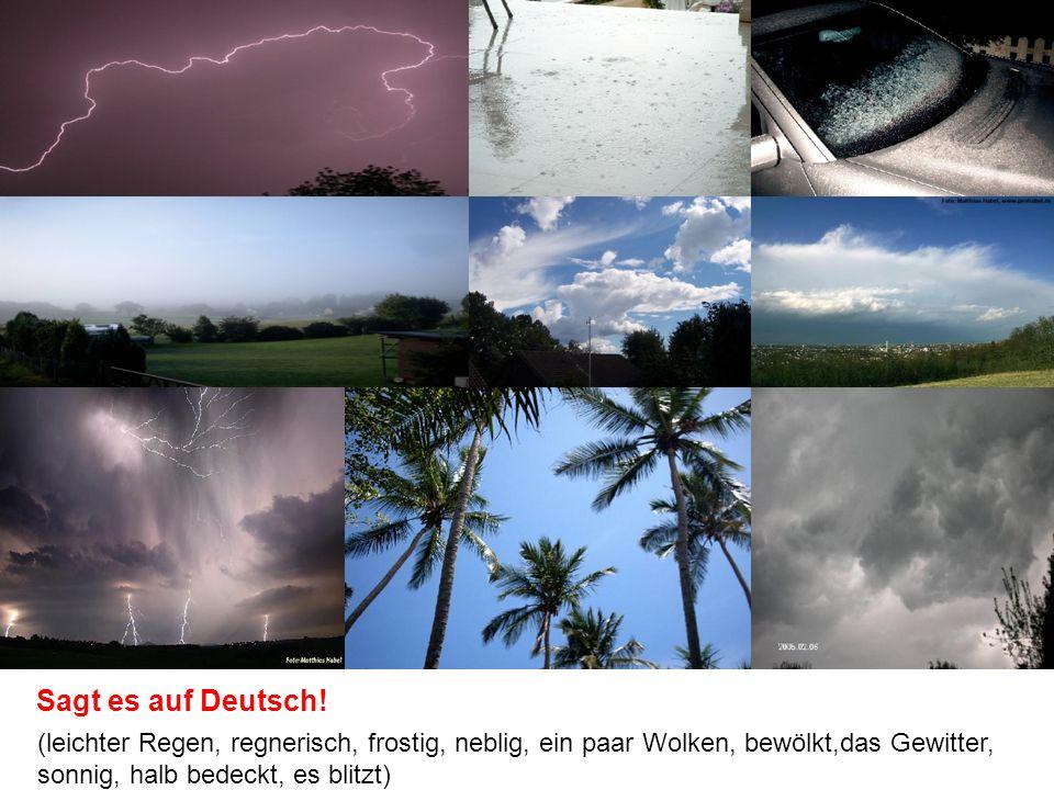 (leichter Regen, regnerisch, frostig, neblig, ein paar Wolken, bewölkt,das Gewitter, sonnig, halb bedeckt, es blitzt) Sagt es auf Deutsch!