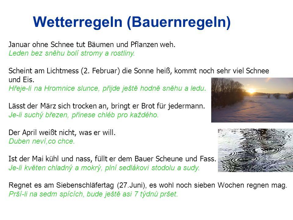 Wetterregeln (Bauernregeln) Januar ohne Schnee tut Bäumen und Pflanzen weh. Leden bez sněhu bolí stromy a rostliny. Scheint am Lichtmess (2. Februar)