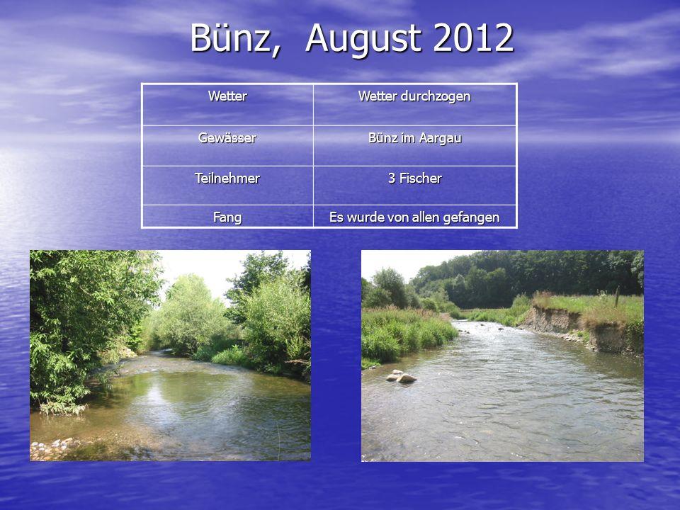 Bünz, August 2012 Wetter Wetter durchzogen Gewässer Bünz im Aargau Teilnehmer 3 Fischer Fang Es wurde von allen gefangen