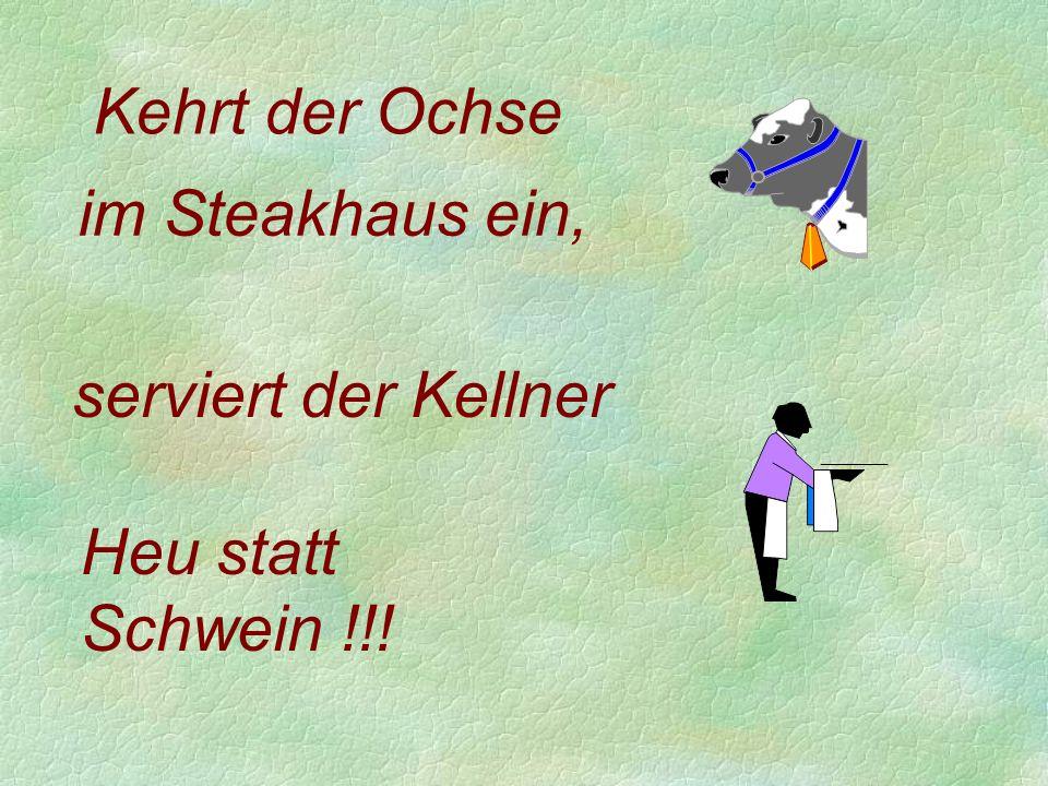 Heu statt Schwein !!! Kehrt der Ochse serviert der Kellner im Steakhaus ein,