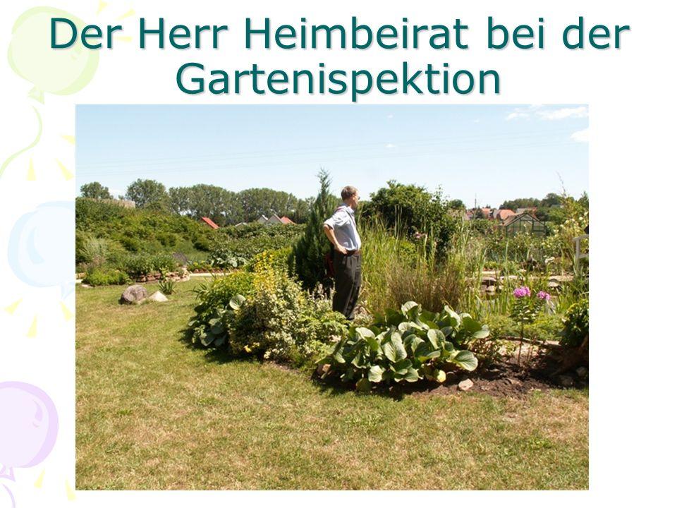 Der Herr Heimbeirat bei der Gartenispektion