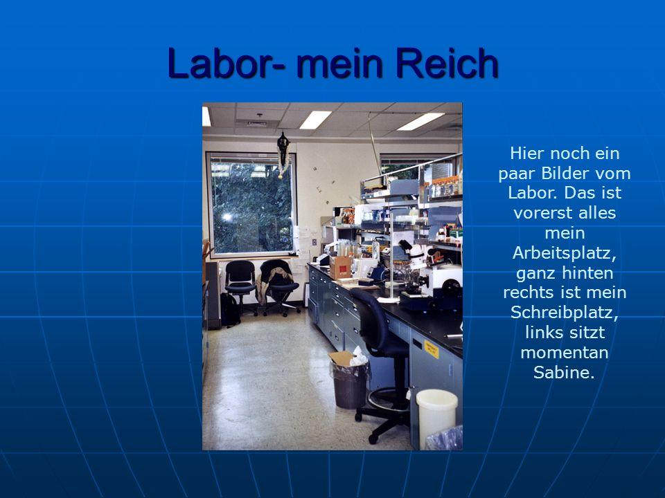 Labor- mein Reich Hier noch ein paar Bilder vom Labor.