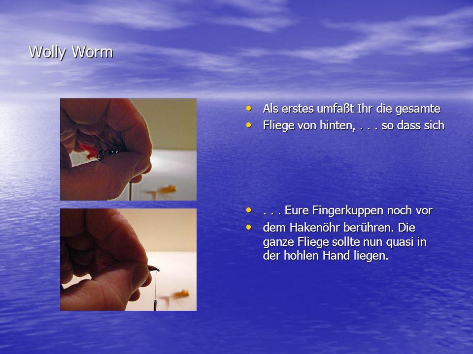 Copyright by Frank Orlowski Iserlohn Dann zieht ihr die geschlossenen Fingerkuppen Dann zieht ihr die geschlossenen Fingerkuppen vorsichtig bis kurz hinter dem herausstehenden vorsichtig bis kurz hinter dem herausstehenden Hechelstamm zurück.
