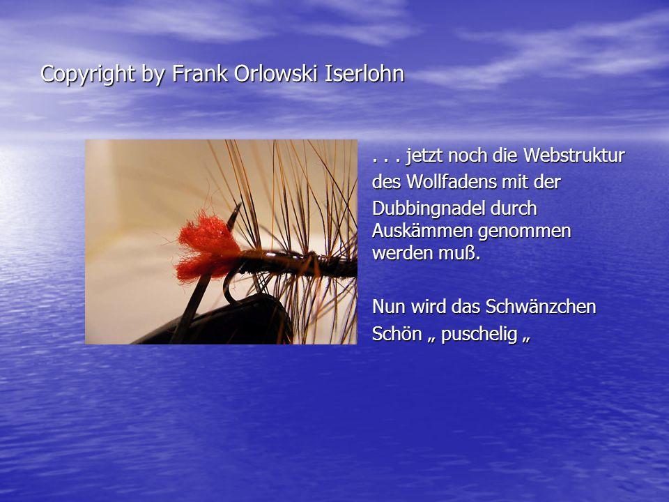 Fliegenbinden mit Frank Orlowski Iserlohn So sollte unser Wolly Worm So sollte unser Wolly Worm nun aussehen .