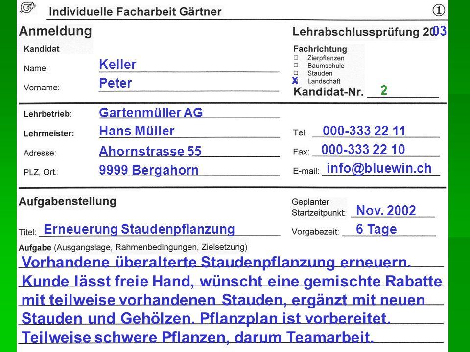 Hans Müller Keller Peter 2 03 x Gartenmüller AG Ahornstrasse 55 9999 Bergahorn 000-333 22 11 000-333 22 10 info@bluewin.ch Erneuerung Staudenpflanzung