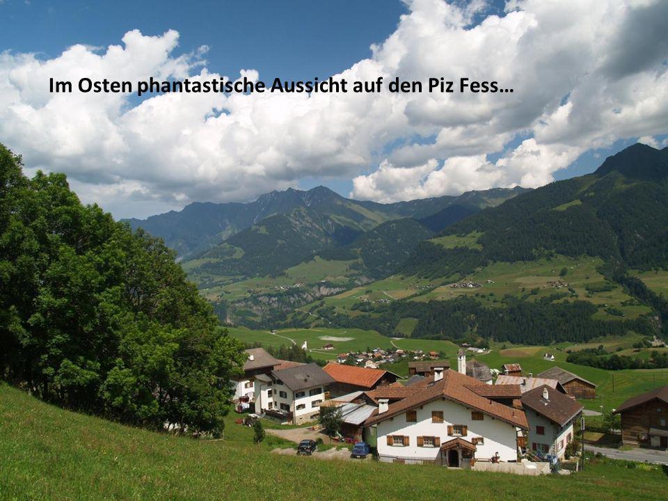 Im idyllisch gelegenen Bergdorf Vattiz bieten wir Ihnen eine herrliche Baulandparzelle an.