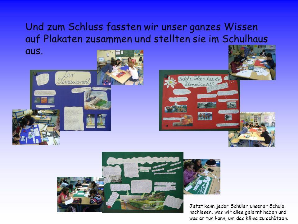 Und zum Schluss fassten wir unser ganzes Wissen auf Plakaten zusammen und stellten sie im Schulhaus aus. Jetzt kann jeder Schüler unserer Schule nachl