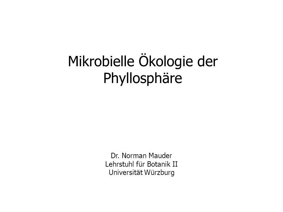 Mikrobielle Ökologie der Phyllosphäre Dr.