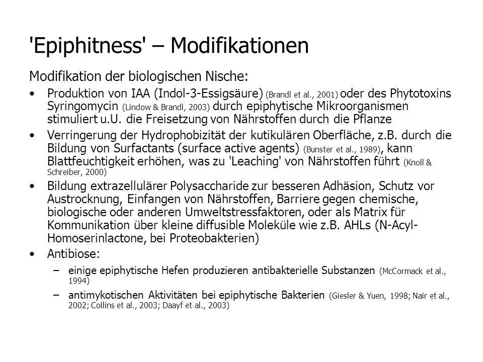 Modifikation der biologischen Nische: Produktion von IAA (Indol-3-Essigsäure) (Brandl et al., 2001) oder des Phytotoxins Syringomycin (Lindow & Brandl, 2003) durch epiphytische Mikroorganismen stimuliert u.U.