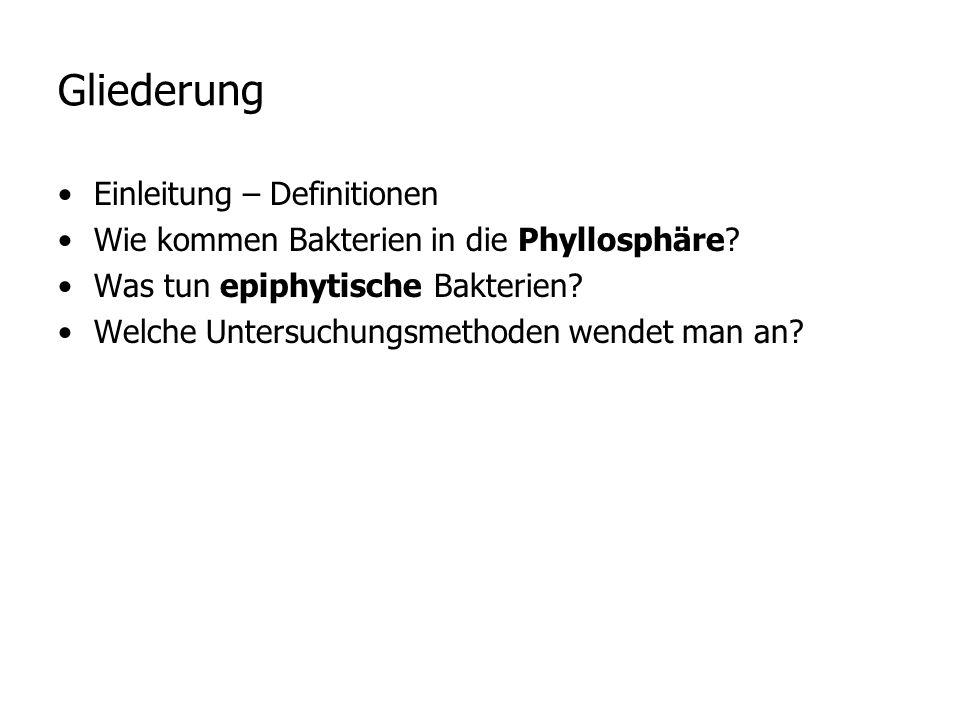 Einleitung – Definitionen Phyllosphäre [griechisch], die von Mikroorganismen (Bakterien, Pilzen) besiedelte Oberfläche der Blätter und Blattscheiden.