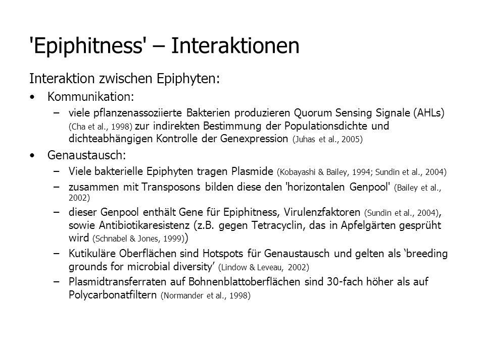 Interaktion zwischen Epiphyten: Kommunikation: –viele pflanzenassoziierte Bakterien produzieren Quorum Sensing Signale (AHLs) (Cha et al., 1998) zur indirekten Bestimmung der Populationsdichte und dichteabhängigen Kontrolle der Genexpression (Juhas et al., 2005) Genaustausch: –Viele bakterielle Epiphyten tragen Plasmide (Kobayashi & Bailey, 1994; Sundin et al., 2004) –zusammen mit Transposons bilden diese den horizontalen Genpool (Bailey et al., 2002) –dieser Genpool enthält Gene für Epiphitness, Virulenzfaktoren (Sundin et al., 2004), sowie Antibiotikaresistenz (z.B.