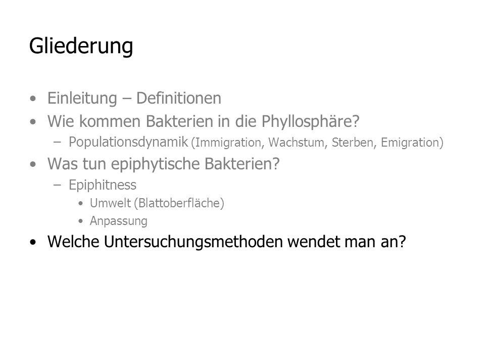 Gliederung Einleitung – Definitionen Wie kommen Bakterien in die Phyllosphäre.