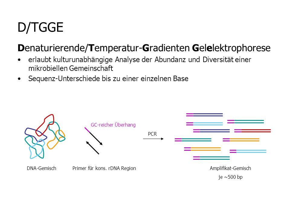 D/TGGE Denaturierende/Temperatur-Gradienten Gelelektrophorese erlaubt kulturunabhängige Analyse der Abundanz und Diversität einer mikrobiellen Gemeinschaft Sequenz-Unterschiede bis zu einer einzelnen Base DNA-Gemisch GC-reicher Überhang Primer für kons.