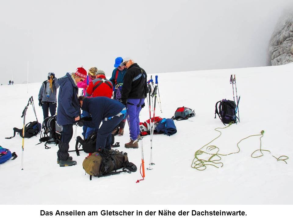 Die Steinerscharte, gesehen nach dem Abstieg zum Gosaugletscher.