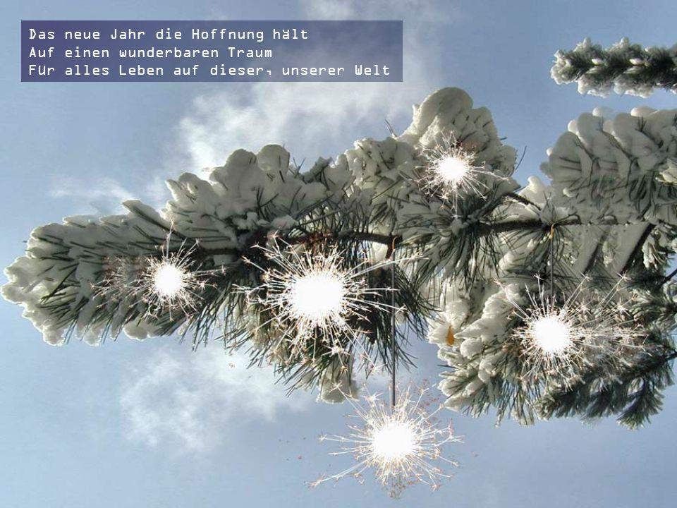 Die Englein Weihnachtslieder singen Die Krippe wird die Botschaft bringen