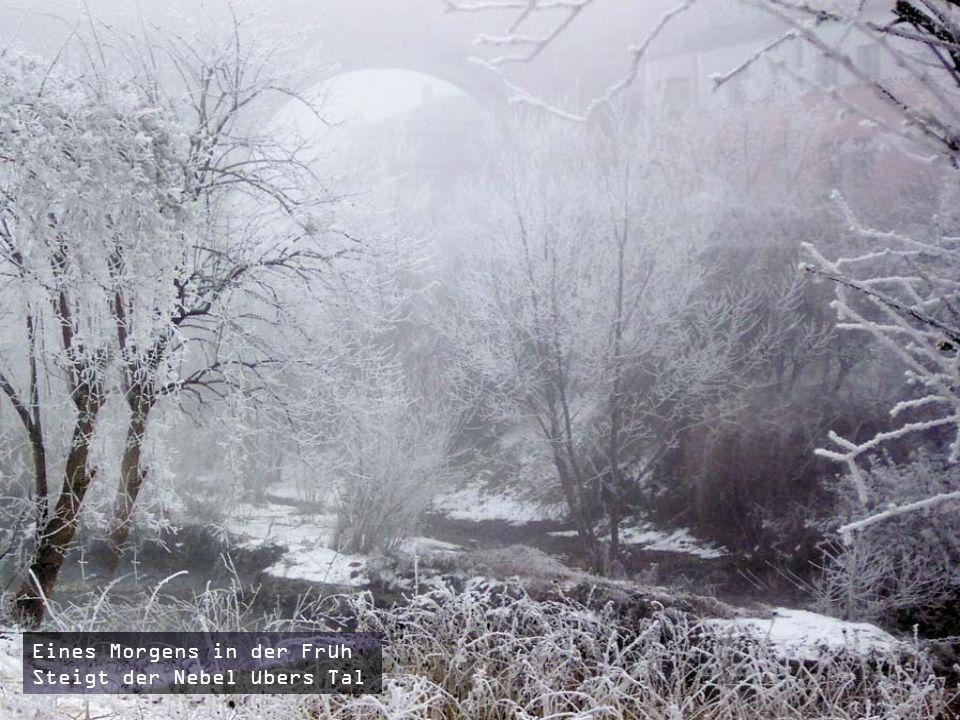 Winterzauber Rau und kalt weht es durch Feld und Wald Bach und Fluss haucht König Winter nun zu Eis